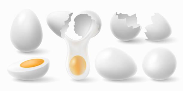 stockillustraties, clipart, cartoons en iconen met kippeneieren. witte easter egg, gekraakte eierschaal en gekookt ei 3d realistische vector illustratie set - fresh start yellow