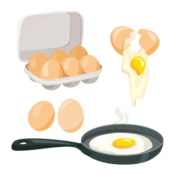 stockillustraties, clipart, cartoons en iconen met kippeneieren, hele, vector gebroken, koken eieren, set - egg