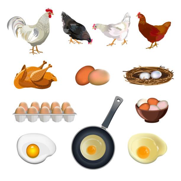 stockillustraties, clipart, cartoons en iconen met kip boerderij set - chicken bird in box