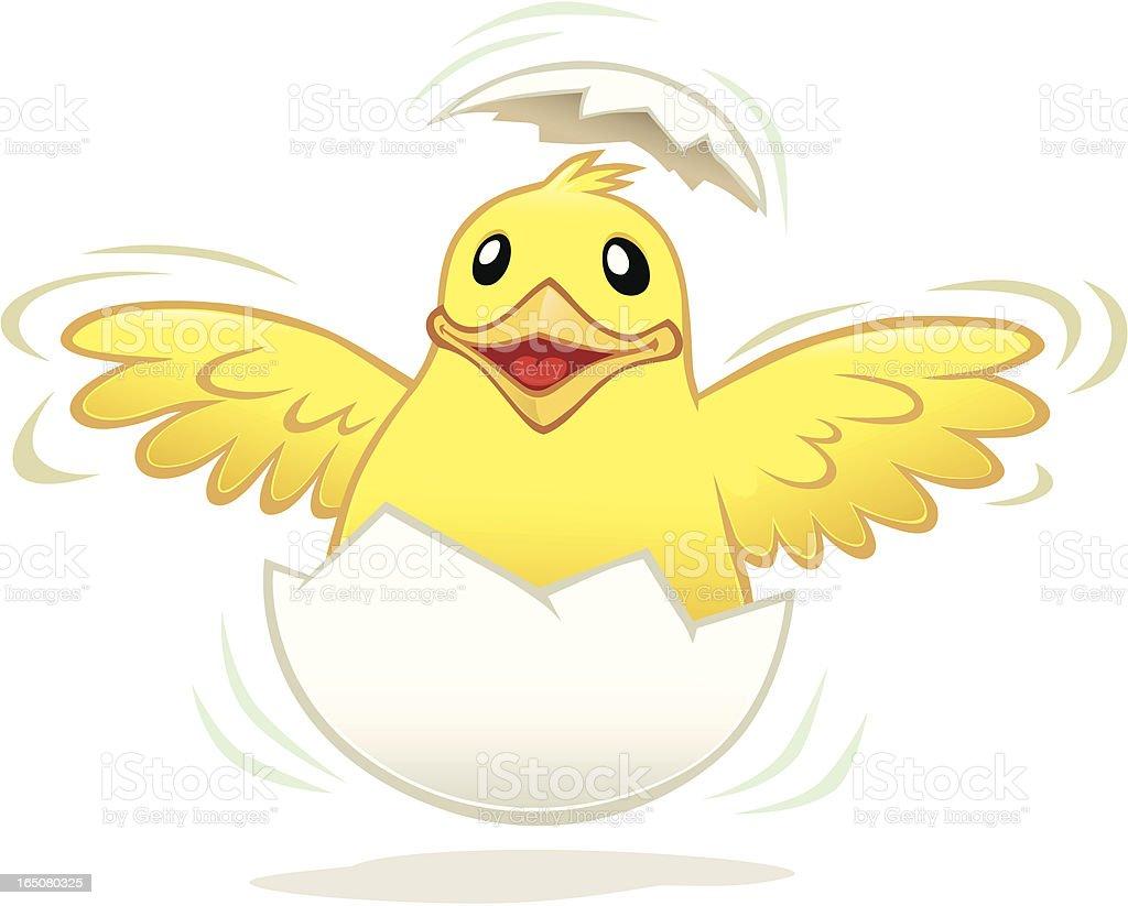 Chicken hatching vector art illustration