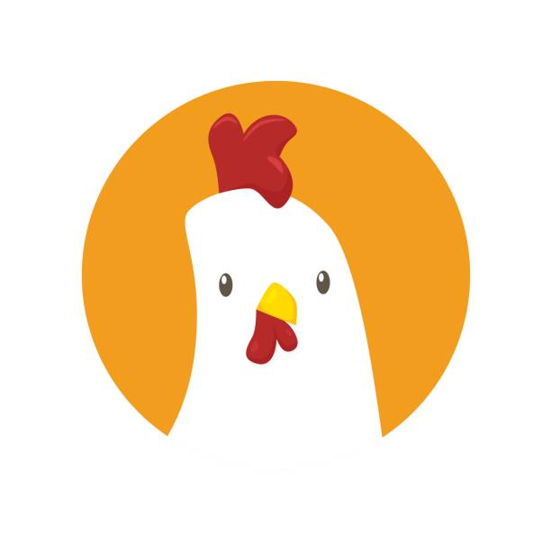 bildbanksillustrationer, clip art samt tecknat material och ikoner med kyckling ikonen vektor - ungtupp