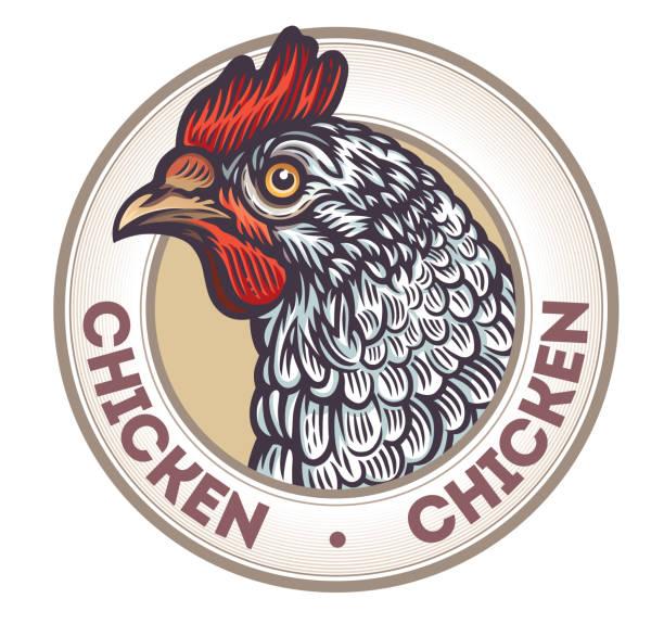 Chicken in a frame vector art illustration