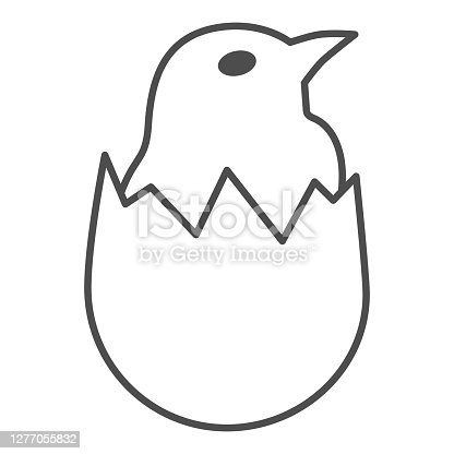 istock Chicken in shell thin line icon, Farm birds concept, little chick in cracked egg sign on white background, newborn chicken in broken eggshell icon in outline style for mobile. Vector graphics. 1277055832