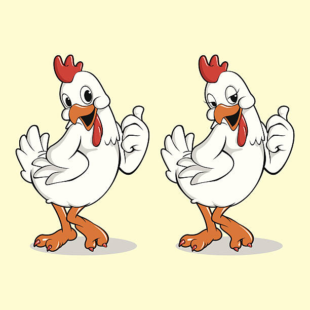 Chicken Mascot vector art illustration