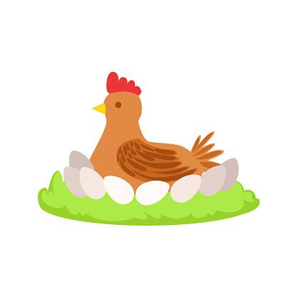 Chicken On Nest Cartoon Farm Related Element  Patch Of Green Grass