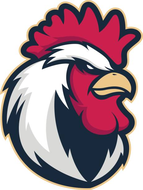chicken rooster head mascot 4 - rooster stock illustrations, clip art, cartoons, & icons