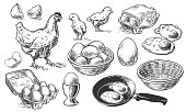 Chicken farm fresh eggs. Vector set of sketch design elements. Hen, poultry and little chicken, isolated on white background. Vector hand drawn vintage engraving illustration for poster.