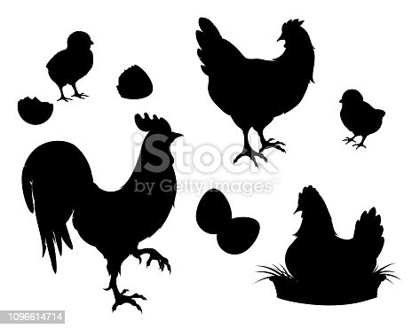 Chicken,rooster,chickens,eggs.Chicken farm set black silhouettes. Isolated elements of the illustration.Vector EPS 10