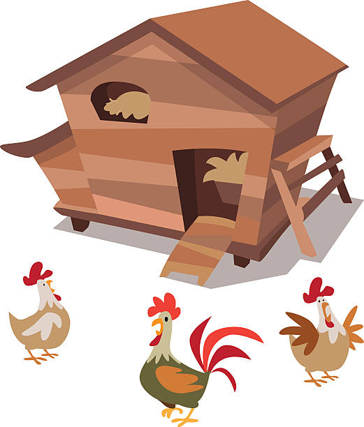 Chickens And Henhouse Vector Art Illustration