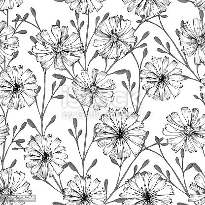 Seamless vector pattern with chicory flower. Black flowers and herbs isolated on white background. Print design for wallpapers, textile, fabric, wrapping gift, ceramic tiles