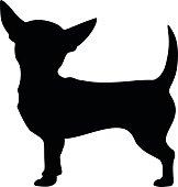 Chihuahua dog. Vector black silhouette.