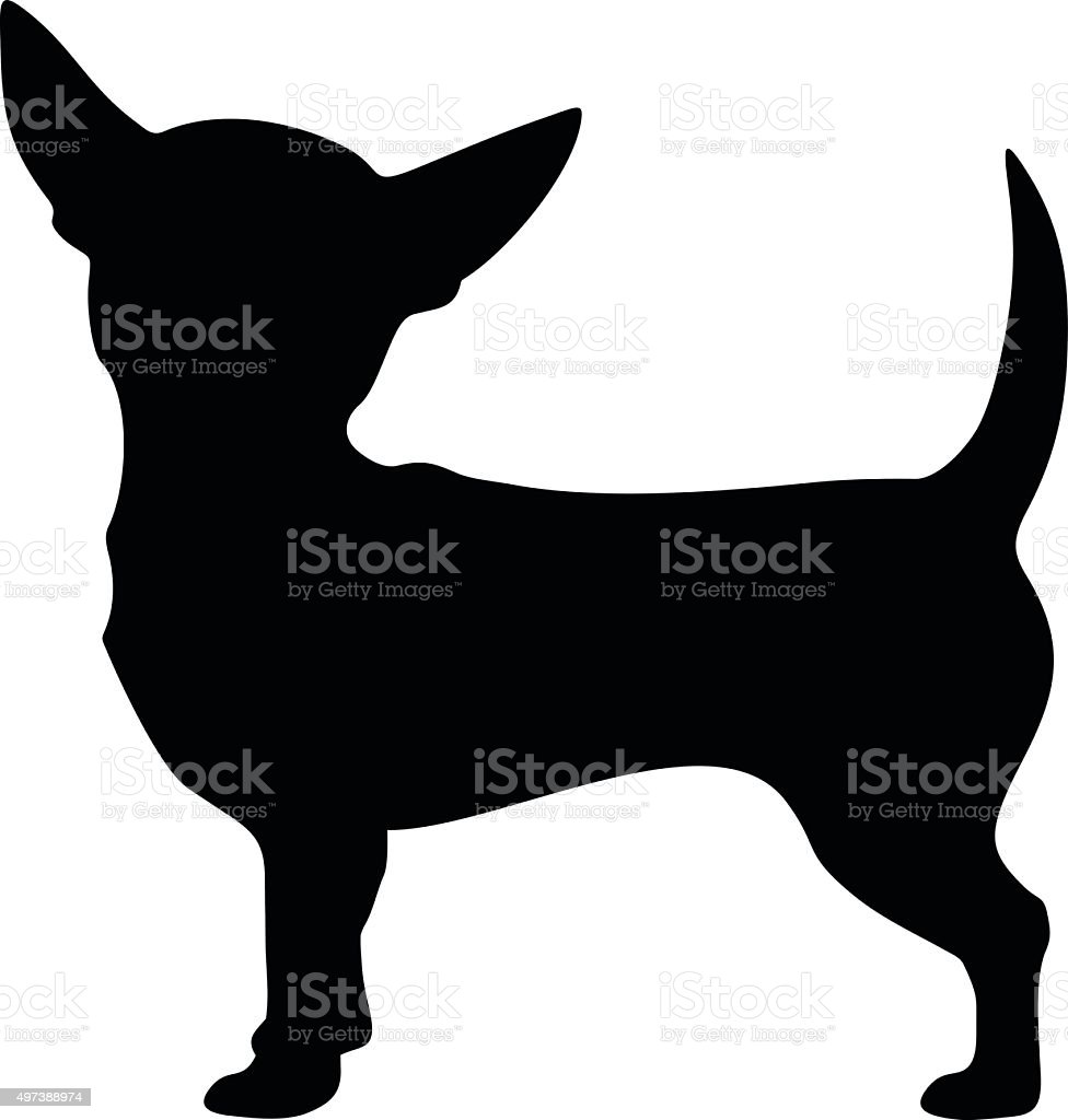 royalty free chihuahua clip art vector images illustrations istock rh istockphoto com chihuahua clip art black and white clipart chihuahua dog