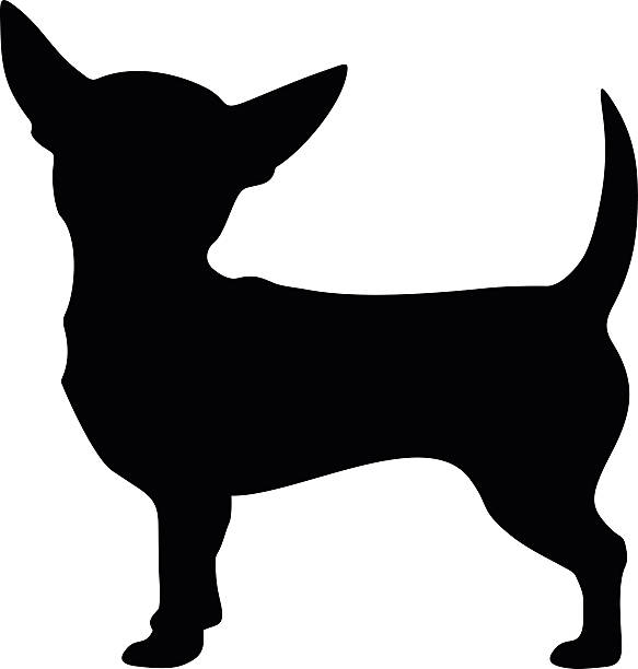Chihuahua Hund. Vektor schwarze silhouette. – Vektorgrafik