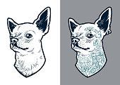 Chihuahua Vector Dog