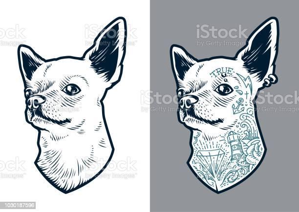 Chihuahua vector dog vector id1030187596?b=1&k=6&m=1030187596&s=612x612&h=hwg acvup fawhwugaml t4zn9r3vhslintgg 3154e=