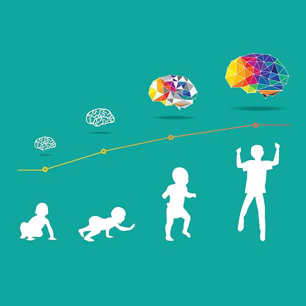 ilustrações, clipart, desenhos animados e ícones de criança e o cérebro desenvolvimento - vida de estudante