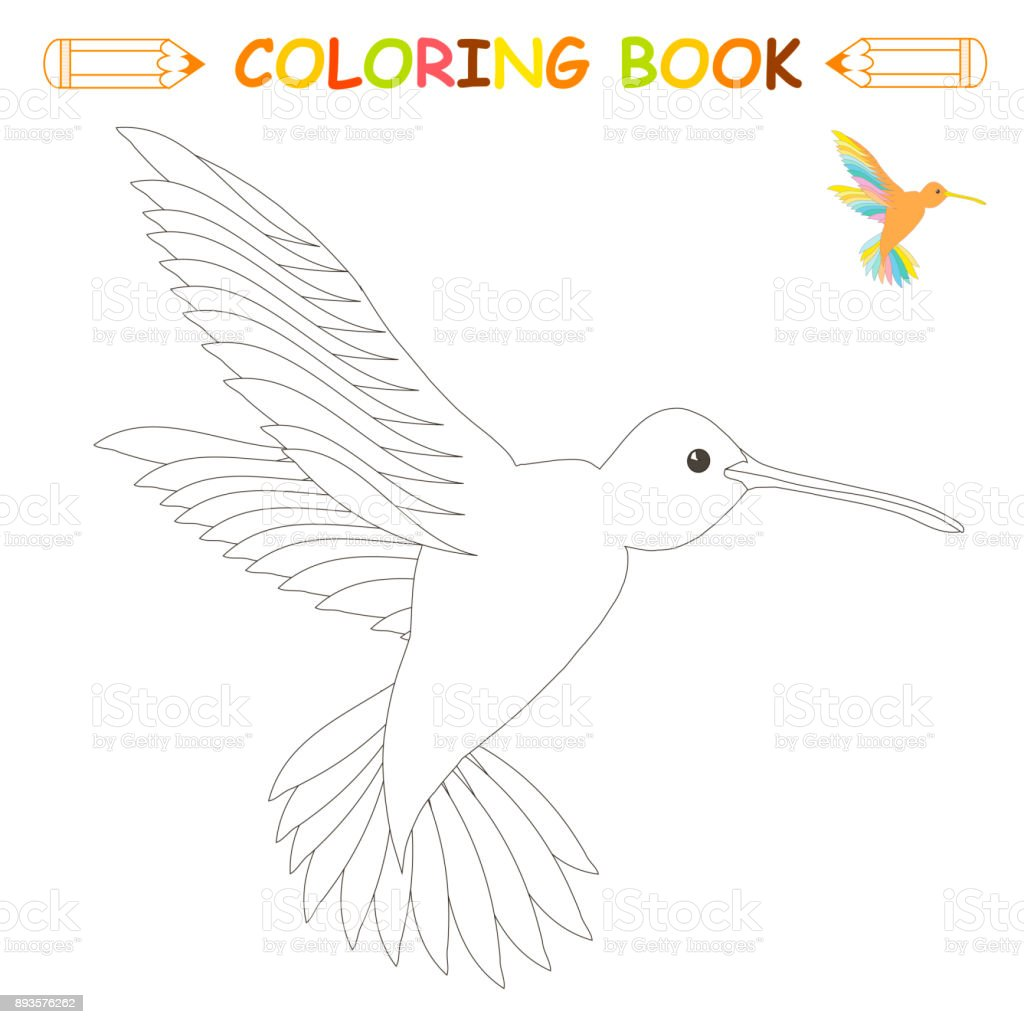 Children coloring page vector illustration, cute hummingbird in monochrome and colour version vector art illustration