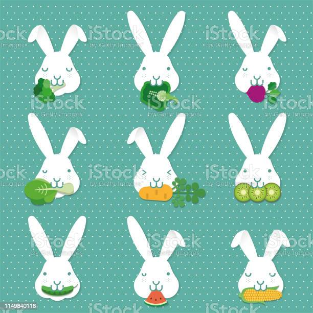 Children education learn how to feed rabbit bunny food illustration vector id1149840116?b=1&k=6&m=1149840116&s=612x612&h=qwf00wftvvyw3x16gy3 fuwaoqymbc1ngcqssatp4sw=
