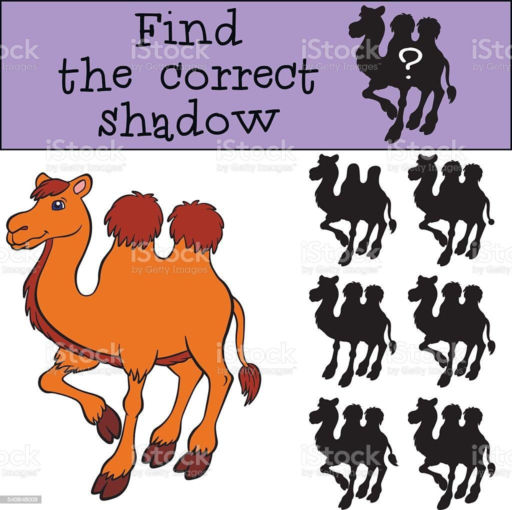 Juegos De Niños Encuentre El Correcto En La Sombra Lindo Camello ...