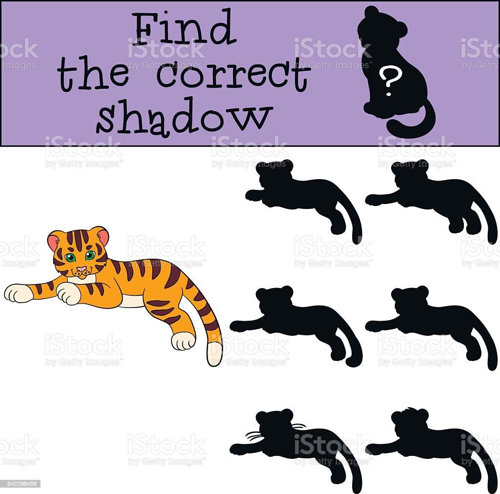 Juegos De Ninos Encuentre El Correcto En La Sombra Pequeno Bebe
