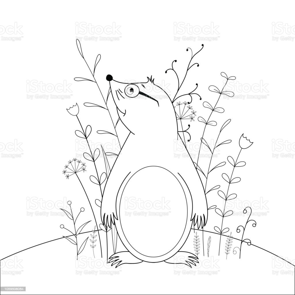 Ilustracion De Los Ninos S Libro Con Animales De Dibujos Animados