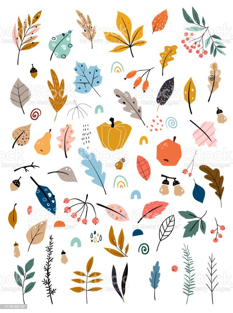 手描きの葉野菜秋の収穫を使った子どもたちのイラスト秋のセット手描きの落ち葉野菜ベリードングリ森のキノコのコレクション いたずら書きのベクターアート素材や画像を多数ご用意 Istock