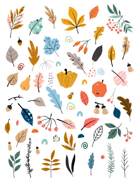 Children s illustration with hand drawn leaves, vegetables and autumn harvest. Autumn set. Collection of hand drawn fallen leaves, vegetables, berries, acorns, forest mushrooms. Children s illustration with hand drawn leaves, vegetables and autumn harvest. Autumn set. Collection of hand drawn fallen leaves, vegetables, berries, acorns, forest mushrooms, tree branches isolated fall leaves stock illustrations