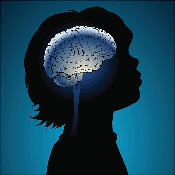 Childs brains vector art illustration