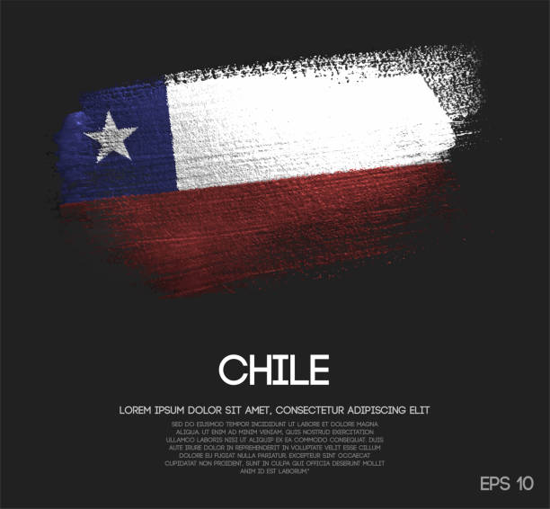 chile flag made of glitter sparkle brush paint vector - chile flag stock illustrations, clip art, cartoons, & icons