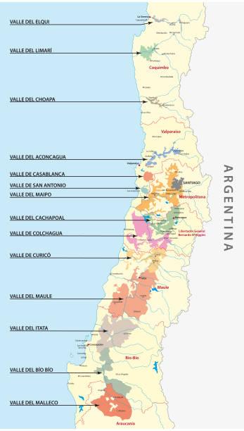 chilenischer wein landkarte - weinkarte stock-grafiken, -clipart, -cartoons und -symbole