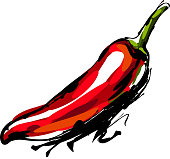 drawing of Chili pepper, Elements are grouped.contains eps10 and high resolution jpeg.