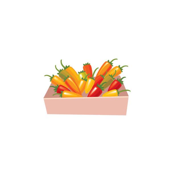Chili Pepper icon vector art illustration