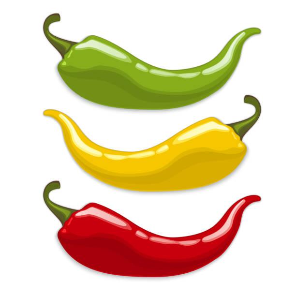 ilustraciones, imágenes clip art, dibujos animados e iconos de stock de chili peppers.  vector aislado - guindilla