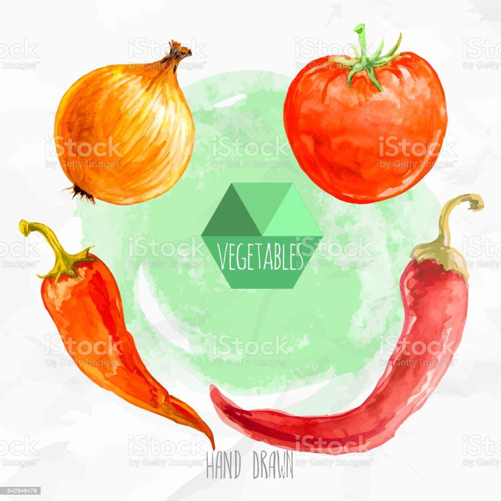 Onion Wallpaper Hd: Chili Peppers Onion And Tomato Stock Vector Art & More