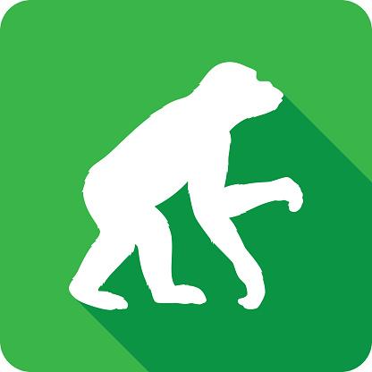 Chimpanzee Icon Silhouette