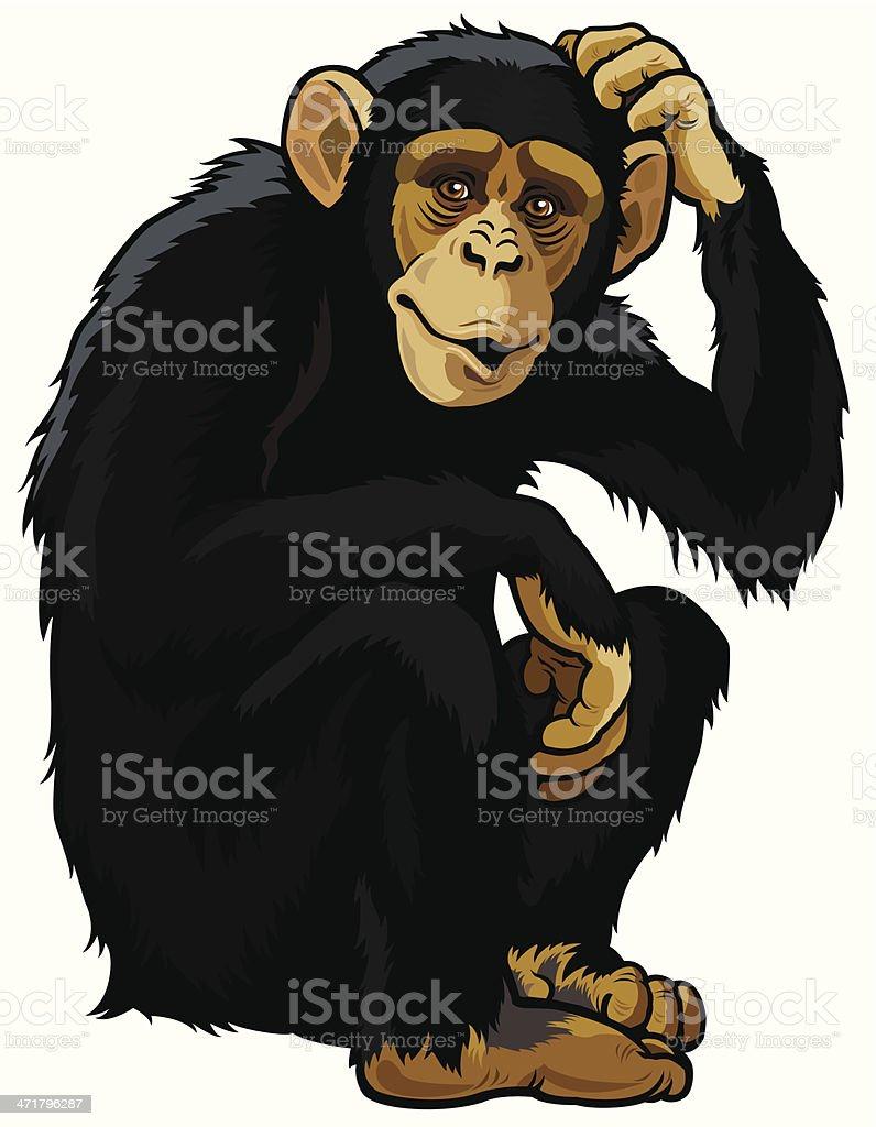 royalty free chimpanzee clip art vector images illustrations istock rh istockphoto com Baby Chimpanzee Clip Art Chimpanzee Clip Art Black and White