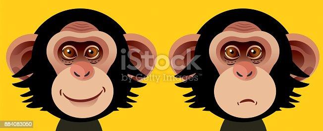 istock Chimpanzee 884083050