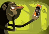 chimpanzee video chatting with gorilla via smartphone