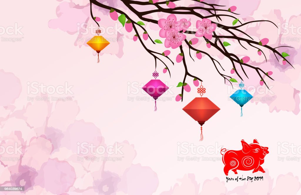 Chinese New Year 2019 card with plum blossom and lantern - Royalty-free 2019 stock vector