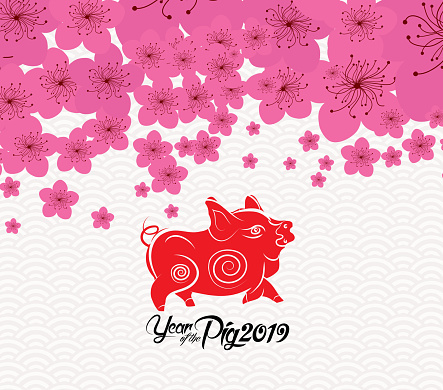 Chinese New Year 2019 Plum Blossom Background Year Of The Pig Stock Illustration - Download Image Now