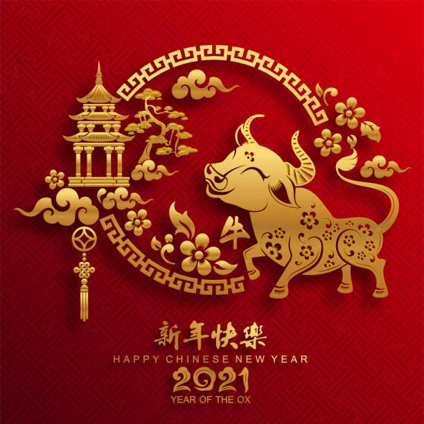 중국 새해 2021. - chinese new year stock illustrations