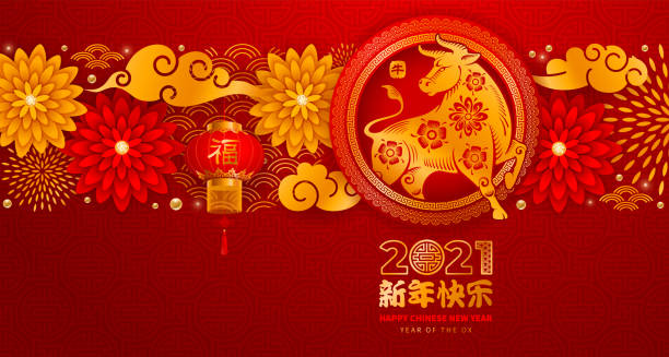 중국 새해 2021 년 황소 - chinese new year stock illustrations