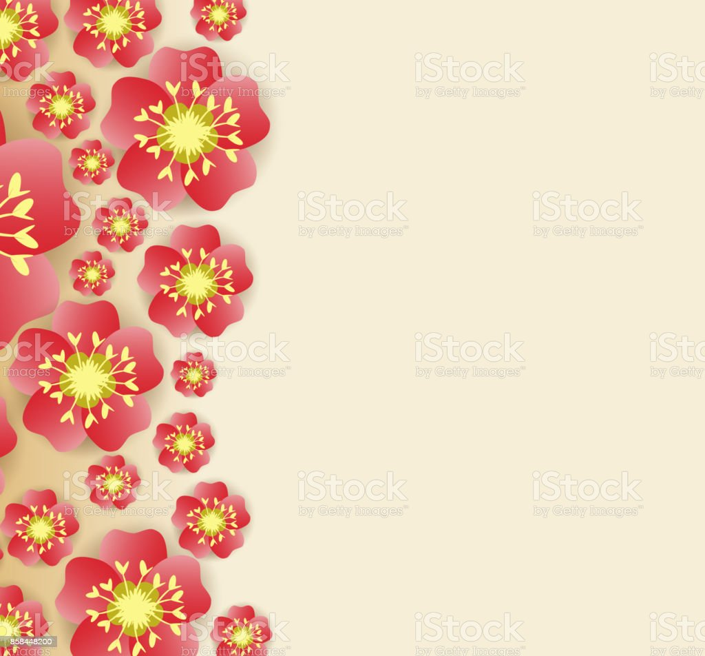 chinese new year background blooming sakura branches royalty free chinese new year background blooming sakura