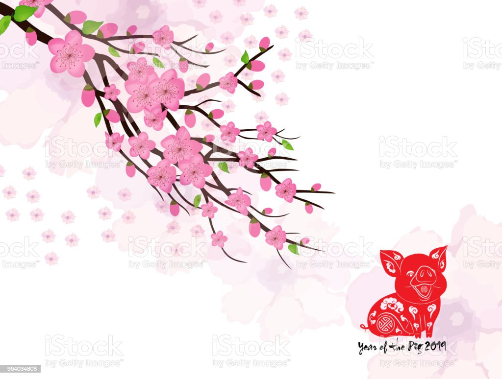 Chinese New Year card with plum blossom and lantern - Royalty-free 2019 stock vector