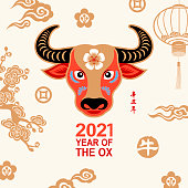 Celebrate the Year of the Ox 2021 with colorful ox head on the gold colored pattern, the vertical Chinese phrase means year of the ox according to lunar calendar