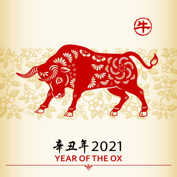 중국 설날 옥스 - chinese new year stock illustrations