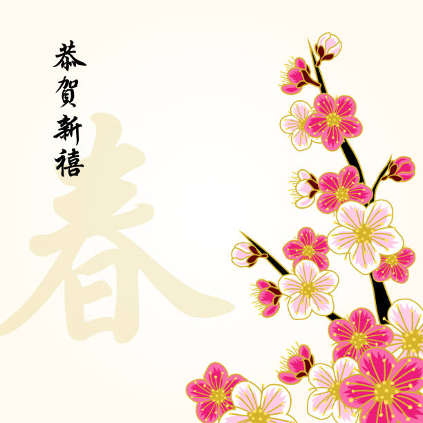 Chinese new year peach flowers Peach flower with chinese calligraphy to celebrate chinese new year. peach blossom stock illustrations
