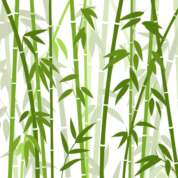 Chinese or japanese bamboo grass oriental wallpaper vector illustration vector art illustration