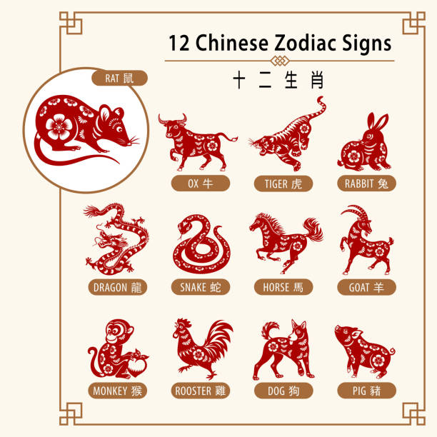 12 chinese zodiac signs - animals calendar stock illustrations
