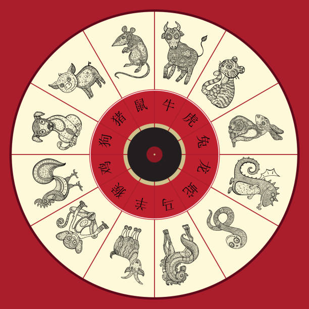 chinese zodiac wheel with twelve - animals calendar stock illustrations